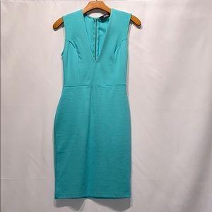 Lulus Bodycon Dress NWOT